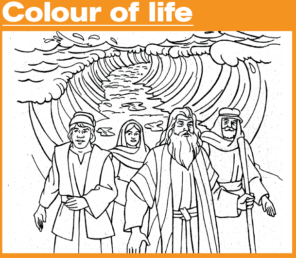 Colour-of-Life