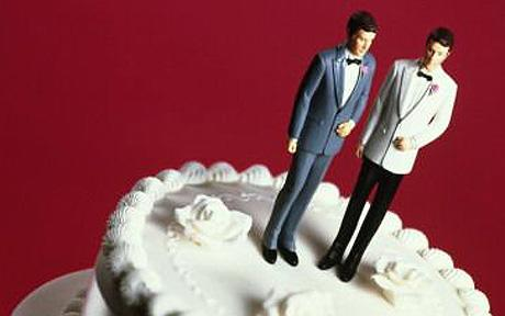 An oxymoron to call  it 'same-sex marriage'