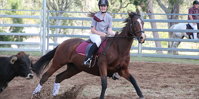 Good times: Bridget Barkle on her horse at the second annual Cow Horse competition at Nanango.