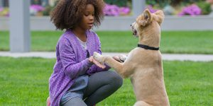 "Annie returns: Quvenzhane Wallis stars in a scene with Sandy the dog from the movie ""Annie"". Photo: CNS/Barry Wetcher"