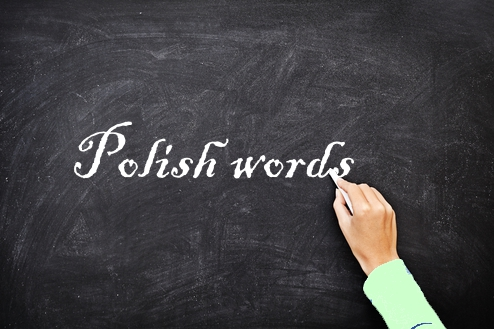 Useful Polish Phrases