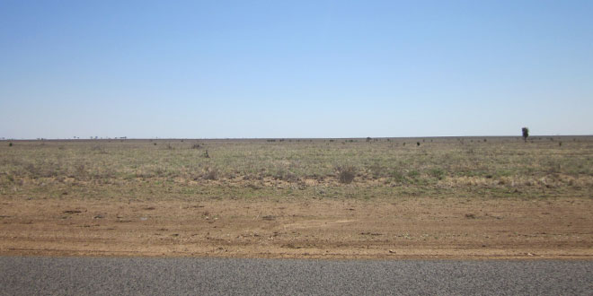 barren land in Aramac