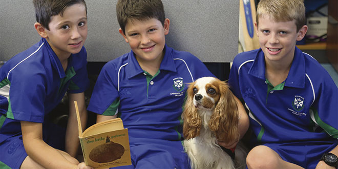 Archie and Ambrose Treacy College boys