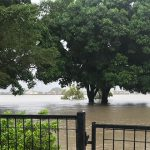 Rising waters bring hardship to Townsville but also bring out the best in the human spirit