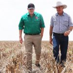 PM Scott Morrison names Vinnies among administrators of new drought support program