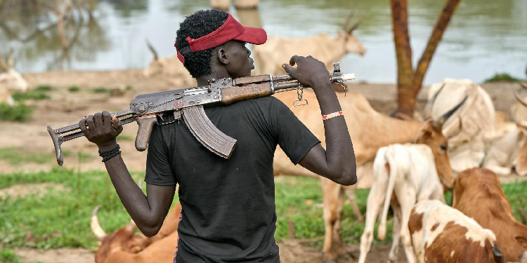 Armed: A cattle keeper holds an assault rifle in Mogok, South Sudan.