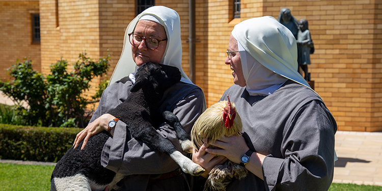 Holy creatures: Sisters of the Morning Star Sr Samuel with a lamb and Sr Sarah Rose holding a chicken at the animal blessing.